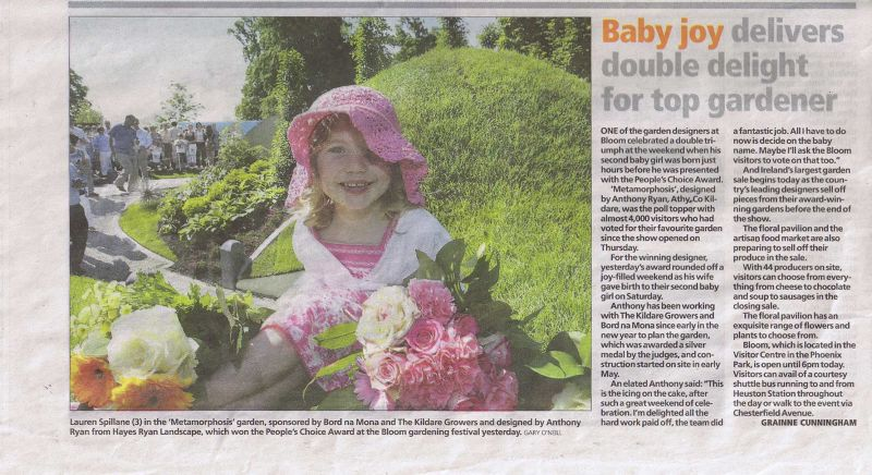 a. Irish Independent Monday June 1st low res